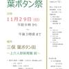 第22回葉ボタン祭 11月29日(日)開催!