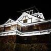 【予約受付中】10/8~11/7 夜の福知山城などでアートフェスティバル!